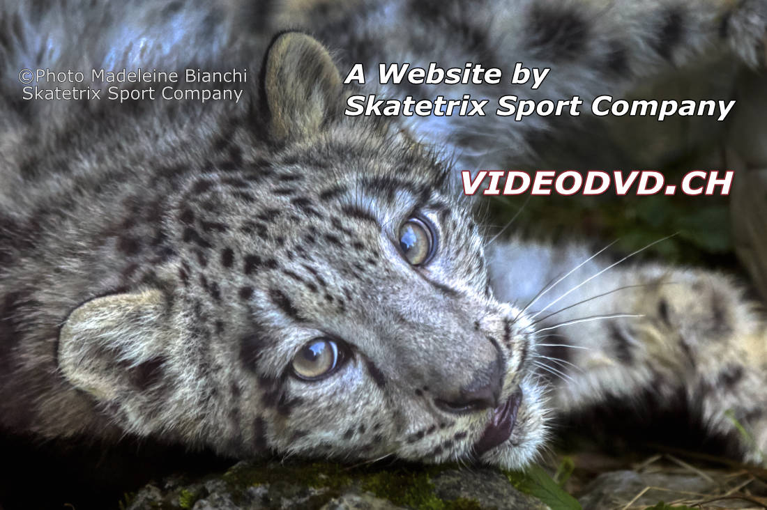 I'm the little SNOW LEOPARD MOHAN! The cute little Speaker of VIDEODVD.CH! You all are cordially welcome at VIDEODVD site!
