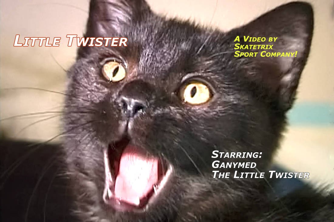Video: LITTLE TWISTER! GANYMED, the 4-month-old little British Short hair tomcat. An indefatigable bundle of energy on 4 little paws. Certainly, I'm still small, but the big world is mine.