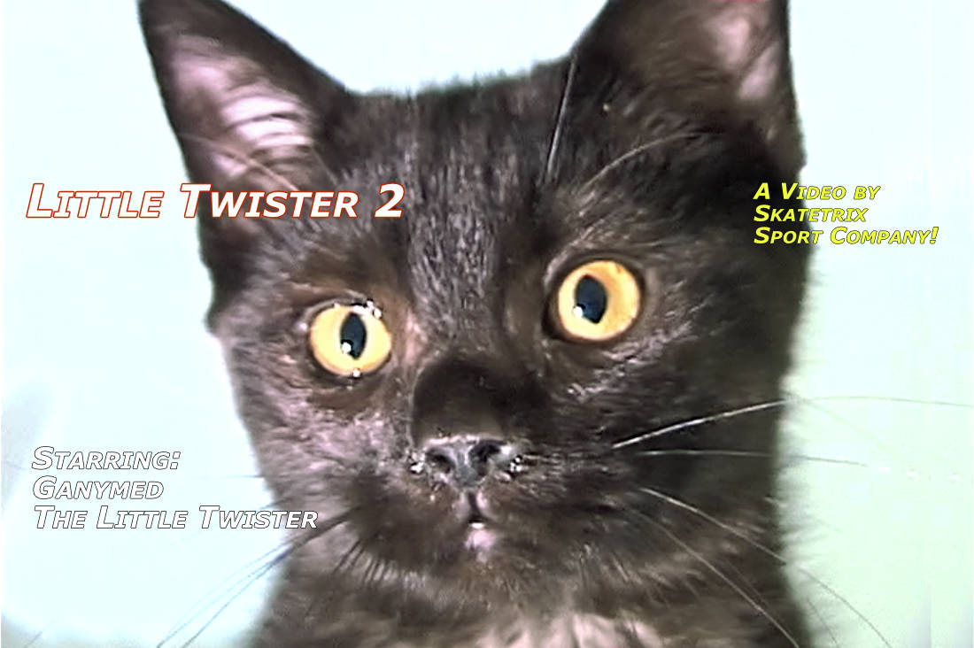 Video: LITTLE TWISTER 2! GANYMED, the 4-month-old little British Short hair tomcat.See my Christmas party! Santa Claus is coming to town? Pshaw! I am not afraid of him at all!